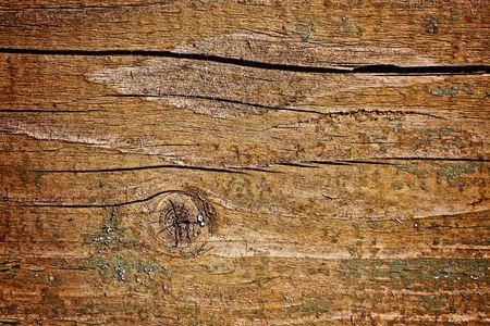 photo shot of wooden background photo