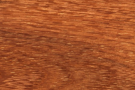 photo shot of texture of tropical wood photo