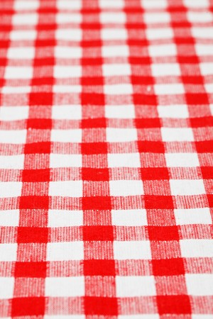 checkered tablecloth Stock Photo - 7070229