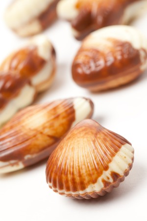chocolate seashells on white background photo