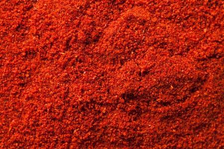 shot of spicy chili powder photo