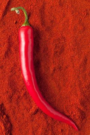 the red chili pepper on chili powder photo