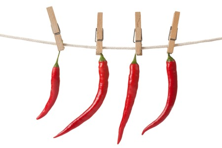 red chilli pepper plant: dried chili pepper