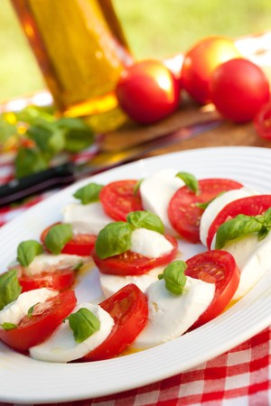 photo shot of caprese salad on white plate photo