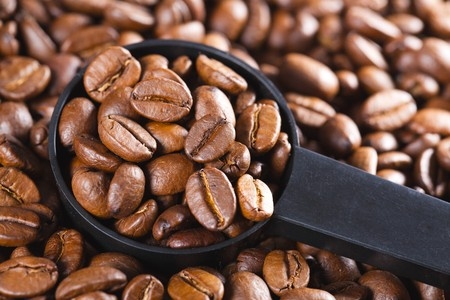 photo shot of coffee beans in scoop photo