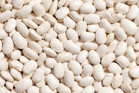 photo shot of white beans background photo