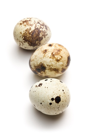 the quail eggs on white background Stock Photo - 8670311