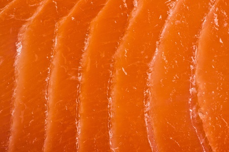 photo shot of salmon meat texture photo