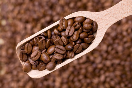 the coffee beans on wooden scoop photo
