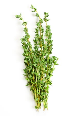 thyme: thyme herb on white background