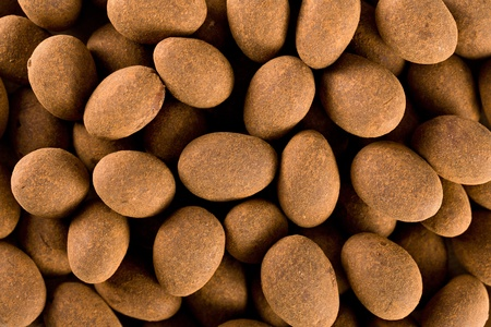 coated: the almonds in chocolate with cinnamon