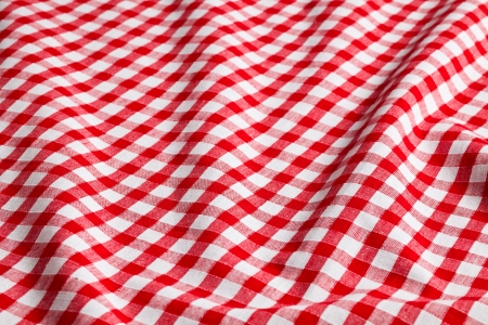 on the tablecloth: the white and red checkered background