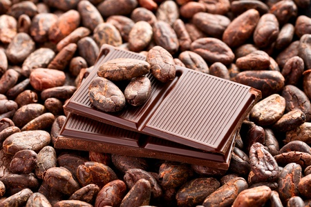 the brown chocolate and cocoa beans photo