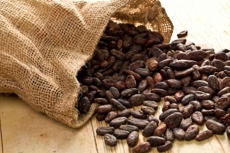 ココア: 木製テーブル上ココア豆とジュート バッグ