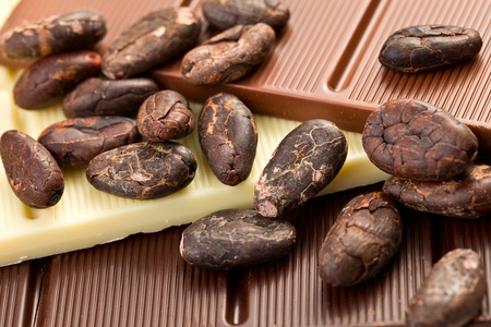 the various chocolate bars with cocoa beans Stock Photo - 12798565