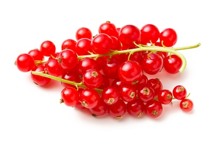 red currants: sweet red currants on white background