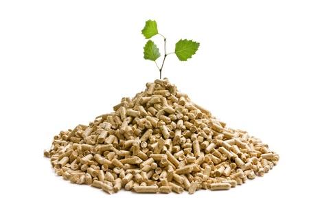 biomasa: de la madera, pellets de calefacción ecológica Foto de archivo