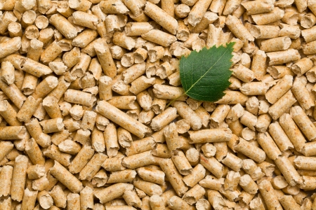 the wooden pellets  ecological heating  photo