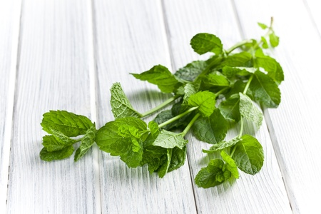 mint leaves: fresh mint leaves on kitchen table Stock Photo