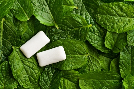 pile of leaves: the mint leaves and the chewing gum