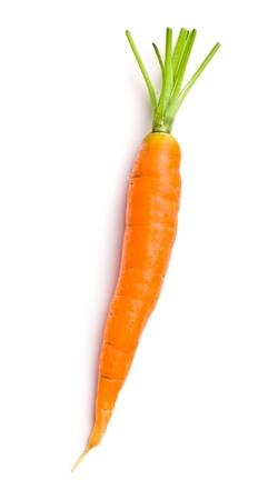 fresh carrot on white background photo