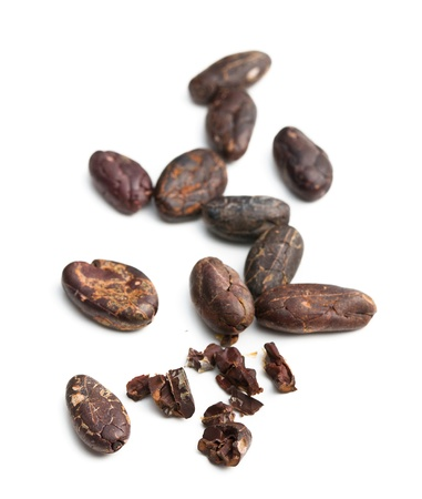cocoa beans on white background photo