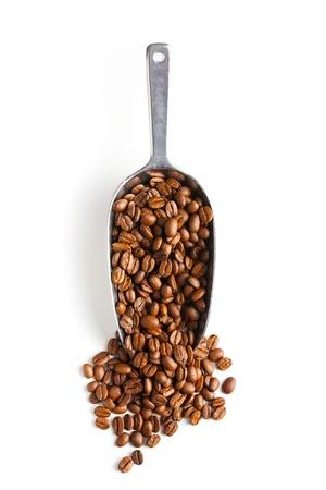 semilla de cafe: cuchara de metal con los granos de café sobre fondo blanco Foto de archivo