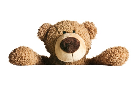 the teddy bear behind a white board Stock Photo