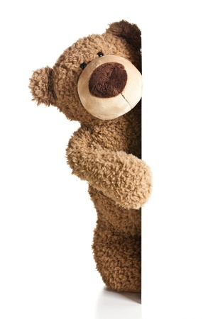 stuffed animals: the teddy bear behind a white board Stock Photo