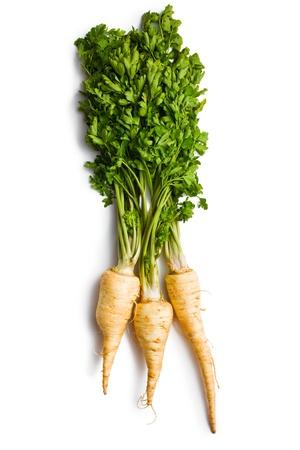 parsnip: fresh parsnip on white background