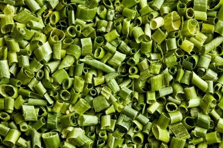 cebollin: patrón de una cebolletas verdes