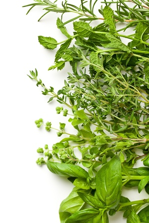 organic background: various herbs on white background