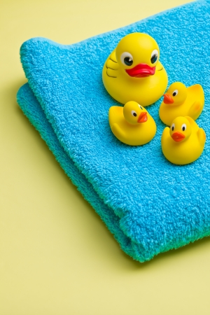 squeak: the yellow bath duck on blue towel