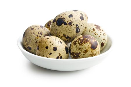 huevos de codorniz: Huevos de codorniz sobre fondo blanco Foto de archivo