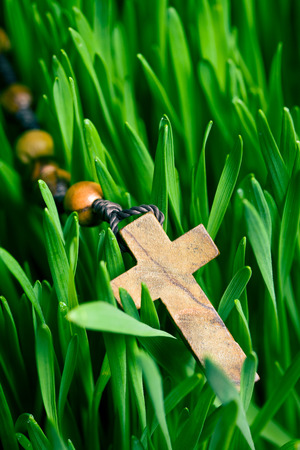 the rosary beads on green lawn photo