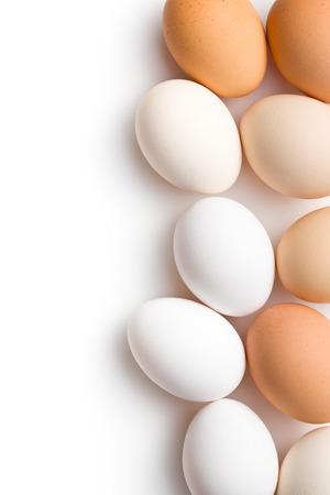 fresh eggs on white background photo