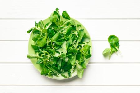 cornsalad: top view of corn salad, lambs lettuce  Stock Photo