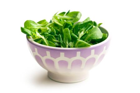 cornsalad: the corn salad, lambs lettuce in ceramic bowl Stock Photo