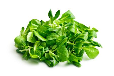 cornsalad: corn salad, lambs lettuce on white background