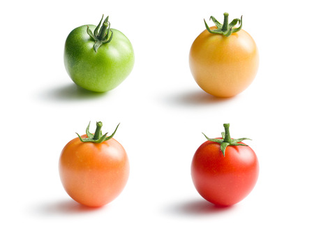 variously: variously ripe tomatoes on white background