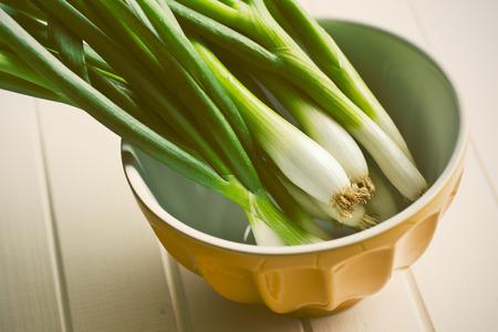the spring onion in ceramic bowl photo