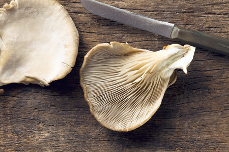 Oyster mushroom on wooden table