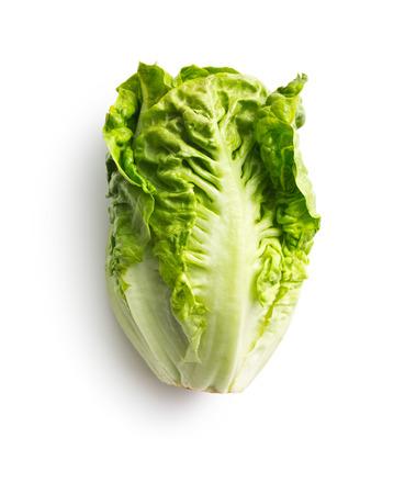 romaine: fresh lettuce on white background