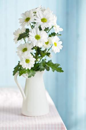 The Chrysanthemum Daisy In Vase Stock Photo Picture And Royalty