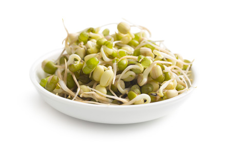 Sprouted mung beans in bowl on white background photo