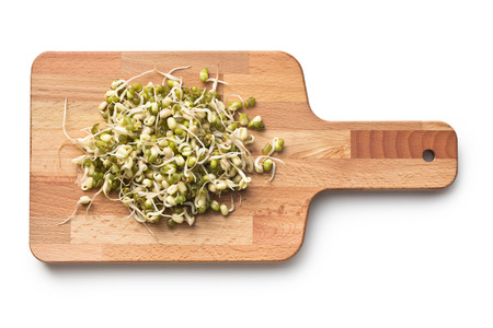 Sprouted mung beans on cutting board photo