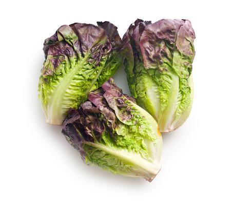 romaine: red lettuce on white background Stock Photo