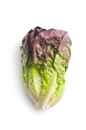 cos: red lettuce on white background Stock Photo
