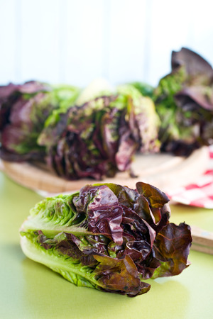 romaine: the red lettuce on green table