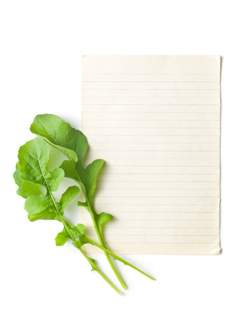rukola: the arugula leaves with blank paper Stock Photo